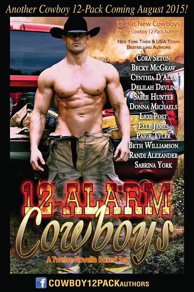 12 alarm cowboys 2 d